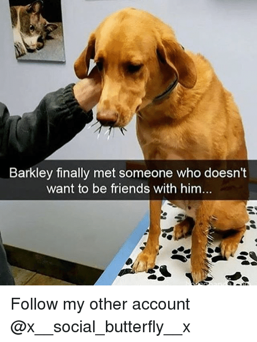 Friends, Memes, and Butterfly: Barkley finally met someone who doesn't  want to be friends with him... Follow my other account @x__social_butterfly__x