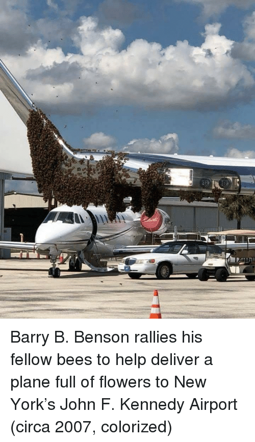 Benson: Barry B. Benson rallies his fellow bees to help deliver a plane full of flowers to New York's John F. Kennedy Airport (circa 2007, colorized)