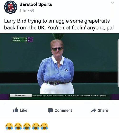 Larry Bird: Barstol Sports  Barstool Sports  Larry Bird trying to smuggle some grapefruits  back from the UK. You're not foolin' anyone, pal  ZVEREV o  FEDERER  0 4  The Queue  queue overnight are allowed to construct tents which accommodate a max of 2 people  ILike  Comment  Share 😂😂😂😂😂
