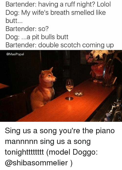 Butt, Dogs, and Funny: Bartender: having a ruff night? Lolol  Dog: My wife's breath smelled like  butt...  Bartender: so?  Dog: ...a pit bulls butt  Bartender: double scotch coming up  @MasiPopal Sing us a song you're the piano mannnnn sing us a song tonightttttttt (model Doggo: @shibasommelier )