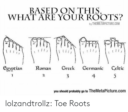 Germanic: BASED ON THIS,  WHAT ARE YOUR ROOTS?  by THEMETAPICTURE.COM  Egyptian  Roman  Greek  Germanic  Celtic  4  S  2  you should probably go to TheMetaPicture.com lolzandtrollz:  Toe Roots