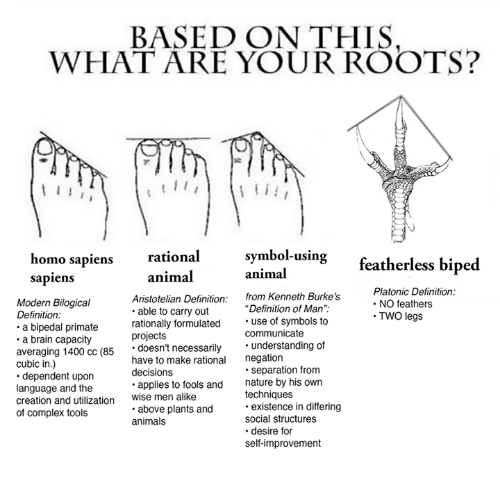 Based On This What Are Your Roots I I Symbol Using Homo Sapiens