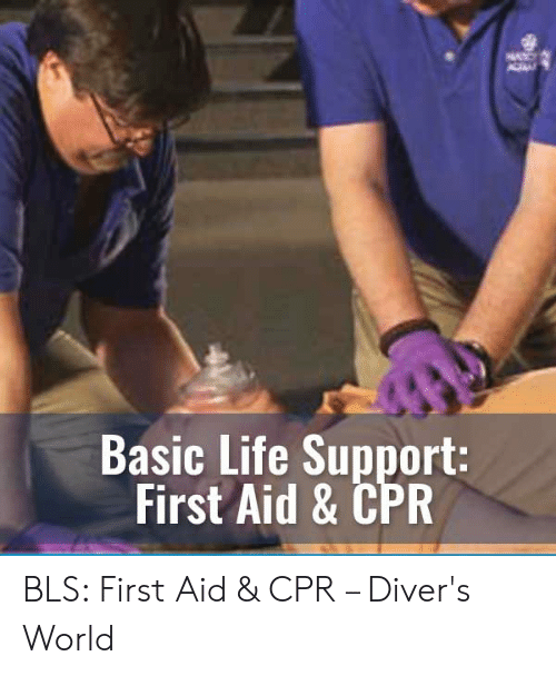 Cpr Meme: Basic Life Support:  First Aid & CPR BLS: First Aid & CPR – Diver's World