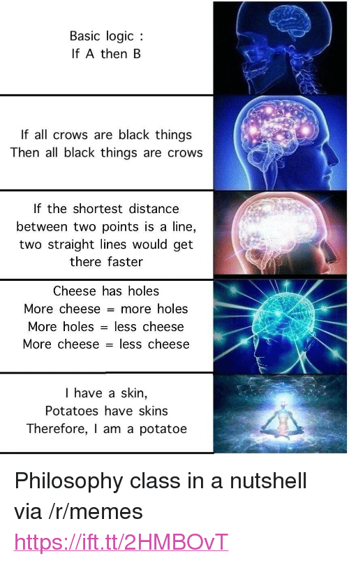 """Logic, Memes, and Holes: Basic logic  If A then B  If all crows are black things  Then all black things are crows  If the shortest distance  between two points is a line,  two straight lines would get  there faster  Cheese has holes  More cheese = more holes  More holes - less  cheese  More cheese - less cheese  I have a skin,  Potatoes have skins  Therefore, I am a potatoe <p>Philosophy class in a nutshell via /r/memes <a href=""""https://ift.tt/2HMBOvT"""">https://ift.tt/2HMBOvT</a></p>"""