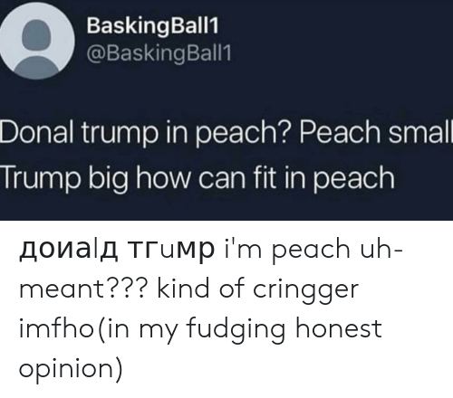 Donal Trump: BaskingBall1  @BaskingBall1  Donal trump in peach? Peach smal  Trump big how can fit in peach доиаlд тгuмр i'm peach uh-meant??? kind of cringger imfho(in my fudging honest opinion)