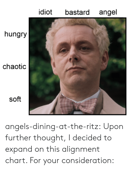 alignment: bastard angel  idiot  hungry  chaotic  soft angels-dining-at-the-ritz:  Upon further thought, I decided to expand on this alignment chart. For your consideration:
