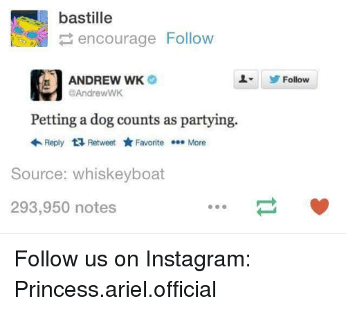 Andrew Wk Petting A Dog Counts As Partying