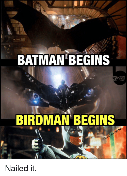Batman, Birdman, and Memes: BATMAN BEGINS  BIRDMAN BEGINS  IBLERDVISION Nailed it.
