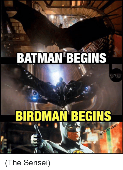 Batman, Birdman, and Memes: BATMAN BEGINS  BIRDMAN BEGINS (The Sensei)