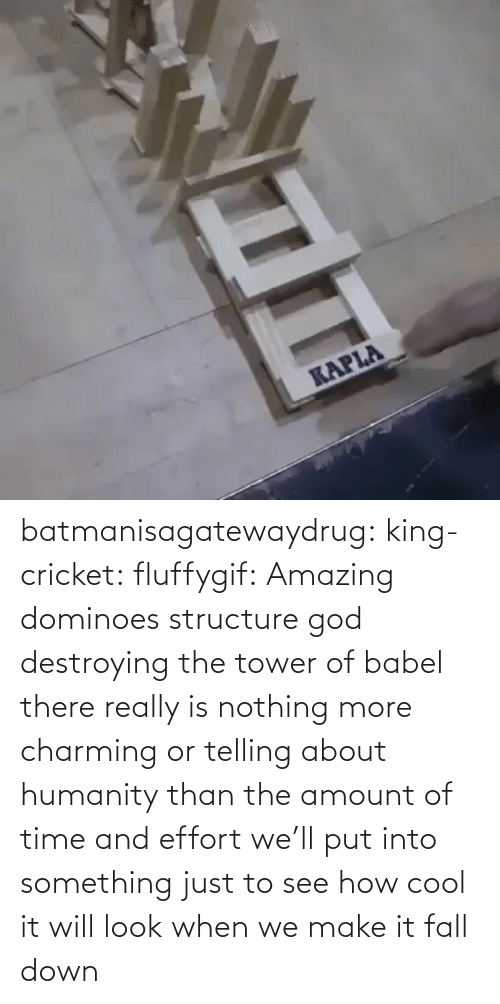 Charming: batmanisagatewaydrug: king-cricket:  fluffygif:  Amazing dominoes structure    god destroying the tower of babel  there really is nothing more charming or telling about humanity than the amount of time and effort we'll put into something just to see how cool it will look when we make it fall down