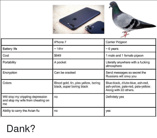 and 1: Battery life  Cost  Portability  iPhone 7  ~ 14hr  $649  A pocket  Carrier Pidgeon  - 6 years  1 male and 1 female pigeon  Literally anywhere with a fucking  atmosphere  Encryption  Can be cracked  Send messages so secret the  Russians will envy you  Colors  Blood gold, tin, piss yellow, boring Blue-black, dilute-blue, ash-red,  black, super boring black  ash-yellow, pale-red, pale-yellow.  Along with 22 others  Will stop my crippling depression no  and stop my wife from cheating on  me  Definitely yes  Ability to carry the Avian flu  no  yes <p>Dank?</p>