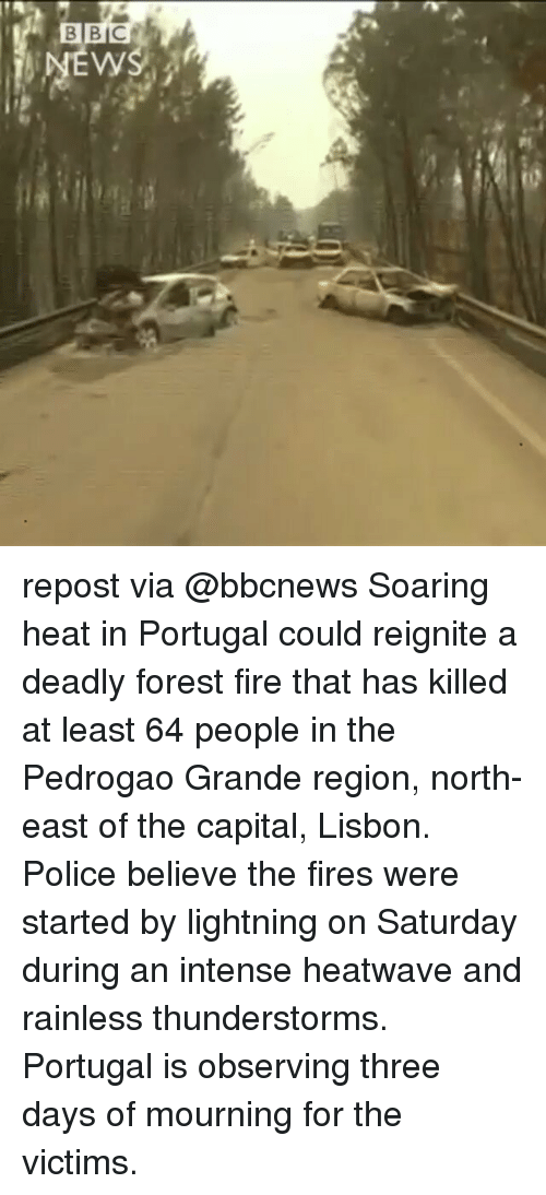 Fire, Memes, and Police: BB  BBC  ws repost via @bbcnews Soaring heat in Portugal could reignite a deadly forest fire that has killed at least 64 people in the Pedrogao Grande region, north-east of the capital, Lisbon. Police believe the fires were started by lightning on Saturday during an intense heatwave and rainless thunderstorms. Portugal is observing three days of mourning for the victims.