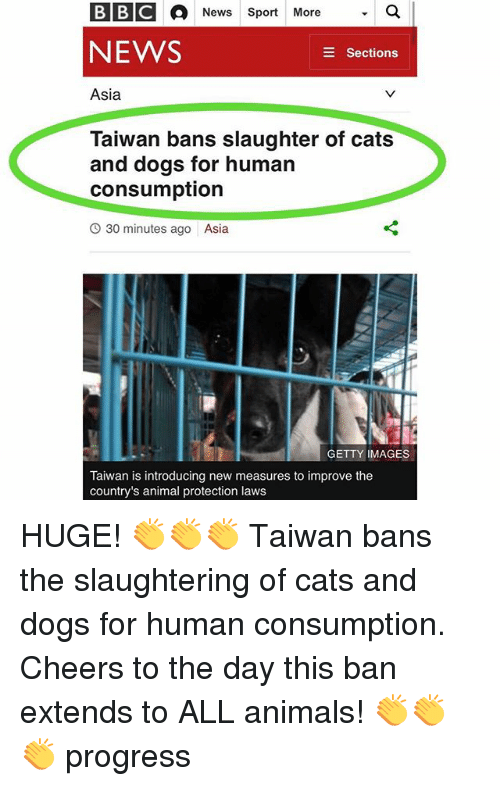 Animals, Cats, and Dogs: BBC A News Sport More  a  NEWS  E Sections  Asia  Taiwan bans slaughter of cats  and dogs for human  consumption  O 30 minutes ago Asia  GETTY IMAGES  Taiwan is introducing new measures to improve the  country's animal protection laws HUGE! 👏👏👏 Taiwan bans the slaughtering of cats and dogs for human consumption. Cheers to the day this ban extends to ALL animals! 👏👏👏 progress