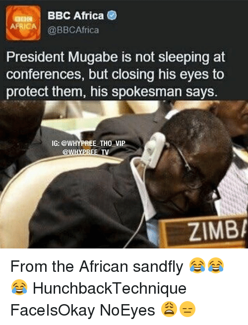 mugabe: BBC Africa  @BBCAfrica  President Mugabe is not sleeping at  conferences, but closing his eyes to  protect them, his spokesman says.  IG: @WHYPREE THO VIP  ZIMBA From the African sandfly 😂😂😂 HunchbackTechnique FaceIsOkay NoEyes 😩😑
