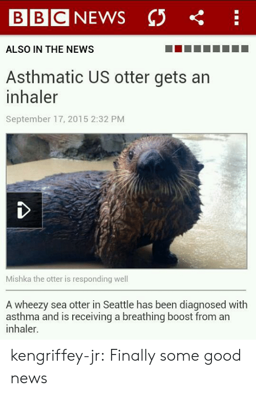 sea otter: BBC NEWS C  ALSO IN THE NEWS  Asthmatic US otter gets an  inhaler  September 17, 2015 2:32 PM  Mishka the otter is responding well  A wheezy sea otter in Seattle has been diagnosed with  asthma and is receiving a breathing boost from an  inhaler. kengriffey-jr:   Finally some good news