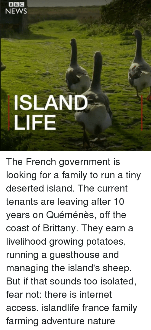 Family, Internet, and Life: BBC  NEWS  ISLAND  LIFE The French government is looking for a family to run a tiny deserted island. The current tenants are leaving after 10 years on Quéménès, off the coast of Brittany. They earn a livelihood growing potatoes, running a guesthouse and managing the island's sheep. But if that sounds too isolated, fear not: there is internet access. islandlife france family farming adventure nature