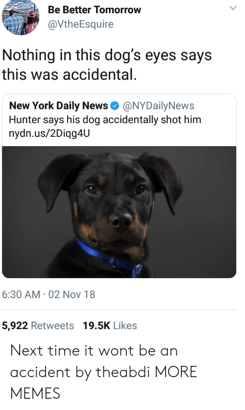 daily news: Be Better Tomorrow  @VtheEsquire  Nothing in this dog's eyes says  this was accidental  New York Daily News Φ @NYDailyNews  Hunter says his dog accidentally shot him  nydn.us/2Diqg4U  6:30 AM 02 Nov 18  5,922 Retweets 19.5K Likes Next time it wont be an accident by theabdi MORE MEMES