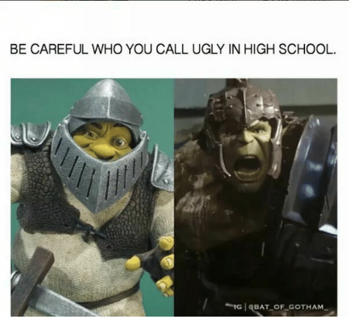 Memes, School, and Ugly: BE CAREFUL WHO YOU CALL UGLY IN HIGH SCHOOL.  IG (BAT-OF GOTHAM