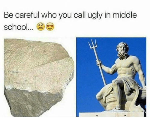 Memes, Be Careful Who You Call Ugly, and Be Careful: Be careful who you call ugly in middle  school