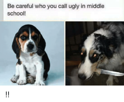 Dogs: Be careful who you call ugly in middle  school! !!