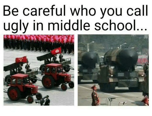 Dank, School, and Ugly: Be careful who you call  ugly in middle school