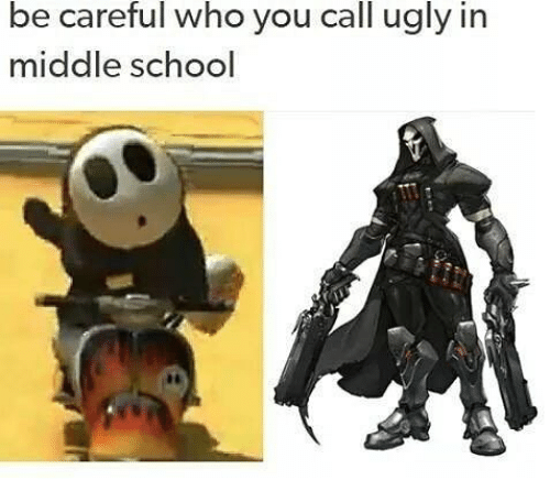 Memes, School, and Ugly: be  careful  who  you  call  ugly  in  middle school