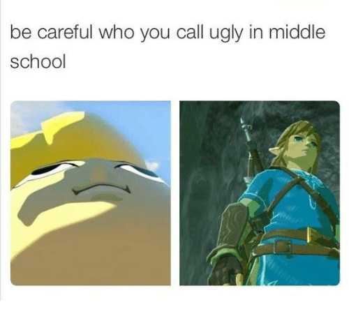 Funny, Ugly, and Be Careful Who You Call Ugly: be careful who you call ugly in middle  school