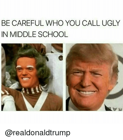 Memes, Be Careful Who You Call Ugly, and Be Careful: BE CAREFUL WHO YOU CALL UGLY  IN MIDDLE SCHOOL @realdonaldtrump