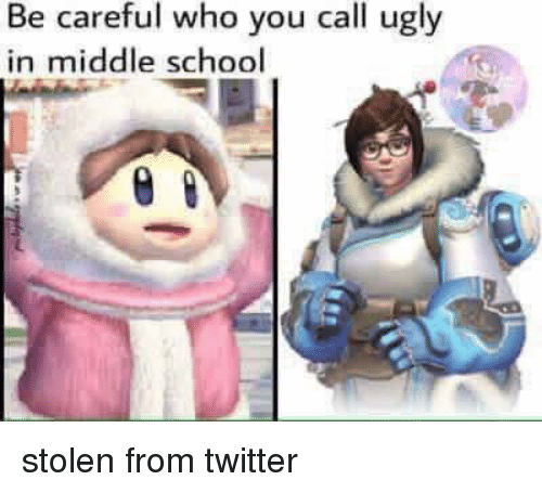 School, Twitter, and Ugly: Be careful who you call ugly  in middle school stolen from twitter