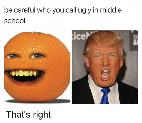 Ugly, Be Careful Who You Call Ugly, and Dank Memes: be careful who you call ugly in middle  school  tice That's right