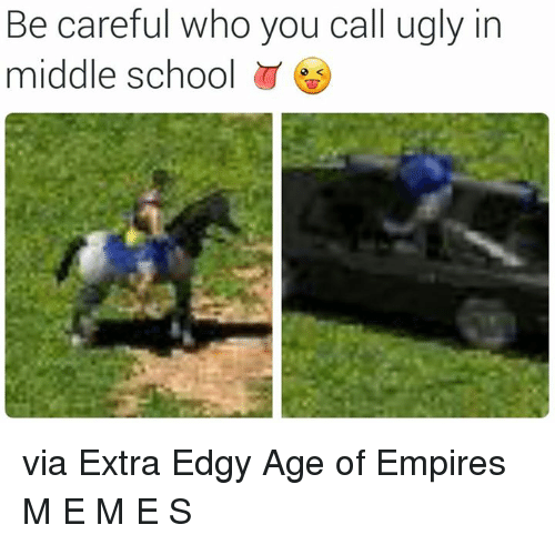Empire, School, and Ugly: Be careful who you call ugly in  middle school via Extra Edgy Age of Empires M E M E S