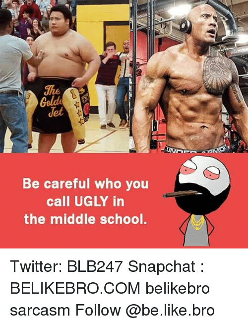 Memes, Be Careful Who You Call Ugly, and 🤖: Be careful who you  call UGLY in  the middle school. Twitter: BLB247 Snapchat : BELIKEBRO.COM belikebro sarcasm Follow @be.like.bro