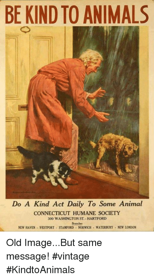 Animals, Memes, and Animal: BE KIND TO ANIMALS  Do A Kind Act Daily To Some Animal  CONNECTICUT HUMANE SOCIETY  300 WASHINGTON ST HARTFORD  Branches  NEW HAVEN WESTPORT STAMFORD NORWICH WATERBURY NEW LONDON Old Image...But same message! #vintage #KindtoAnimals