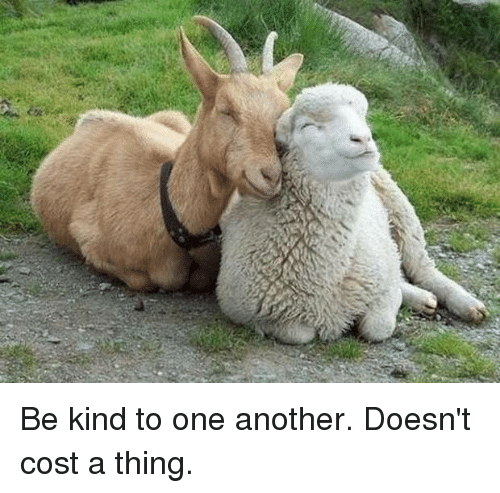 memes: Be kind to one another.  Doesn't cost a thing.