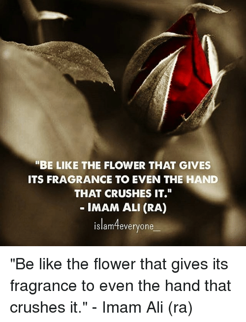 "Evenement: ""BE LIKE THE FLOWER THAT GIVES  ITS FRAGRANCE TO EVEN THE HAND  THAT CRUSHES IT.  IMAM ALI (RA)  islam4everyone ""Be like the flower that gives its fragrance to even the hand that crushes it."" - Imam Ali (ra)"