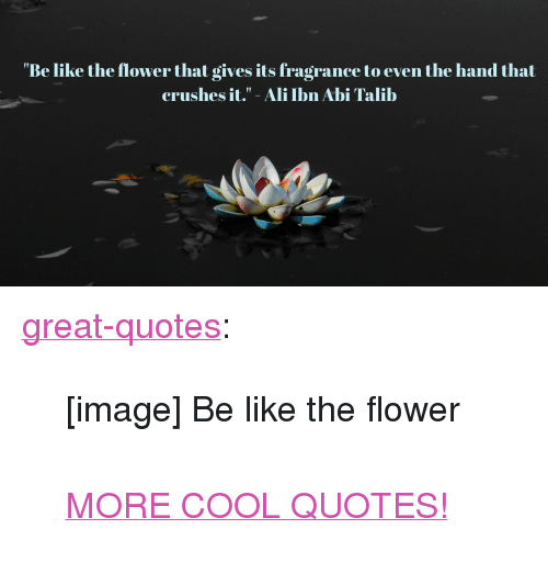 "talib: ""Be like the flower that gives its fragrance to even the hand that  crushes it."" - Ali Ibn Abi Talib <p><a href=""http://great-quotes.tumblr.com/post/162397021712/image-be-like-the-flower-more-cool-quotes"" class=""tumblr_blog"">great-quotes</a>:</p>  <blockquote><p>[image] Be like the flower<br/><br/><a href=""http://cool-quotes.net/"">MORE COOL QUOTES!</a></p></blockquote>"