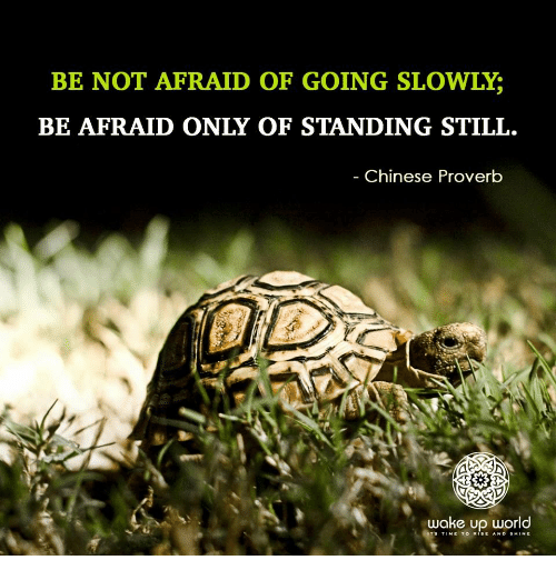 Rise And Shine: BE NOT AFRAID OF GOING SLOWLY;  BE AFRAID ONLY OF STANDING STILL.  Chinese Proverb  wake up world  TS TIME TO RISE AND SHINE