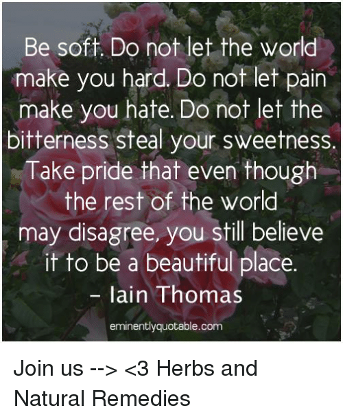 beautiful places: Be soft. Do not let the world  make you hard. Do not let pain  make you hate. Do not let the  bitterness steal your sweetness  Take pride that even though  the rest of the world  may disagree, you still believe  it to be a beautiful place.  lain Thomas  eminentlyquotable.com Join us --> <3 Herbs and Natural Remedies