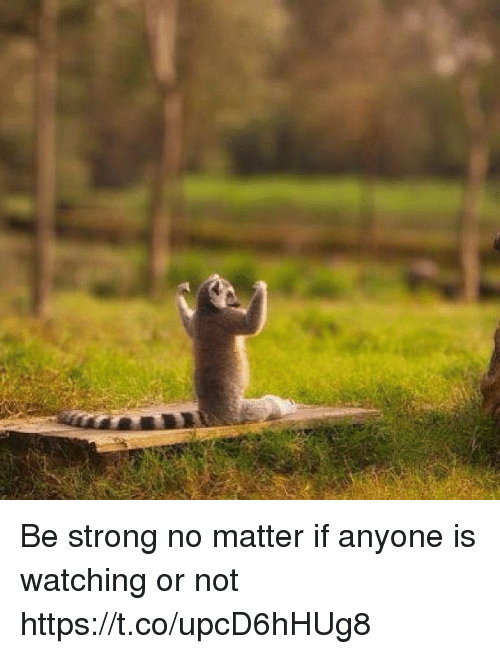 Memes, Strong, and 🤖: Be strong no matter if anyone is watching or not https://t.co/upcD6hHUg8
