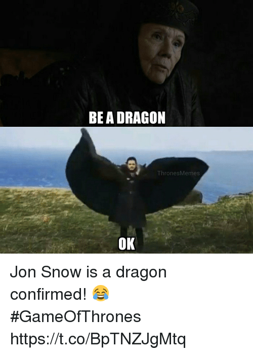 Jon Snow, Snow, and Dragon: BEA DRAGON  Thr  onesMemes  OK Jon Snow is a dragon confirmed!  😂 #GameOfThrones https://t.co/BpTNZJgMtq