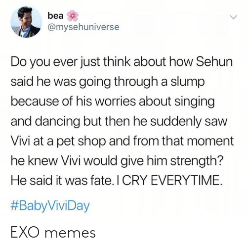 Do You Ever Just: bea  @mysehuniverse  Do you ever just think about how Sehun  said he was going through a slump  because of his worries about singing  and dancing but then he suddenly saw  Vivi at a pet shop and from that moment  he knew Vivi would give him strength?  He said it was fate. I CRY EVERYTIME.  EXO memes