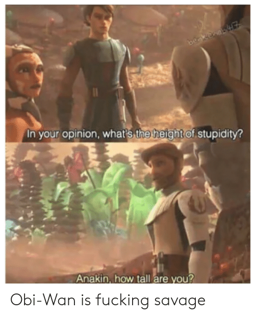 Stupidity: beakenaE  In your opinion, whar's the height of stupidity?  Anakin, how tall are you? Obi-Wan is fucking savage