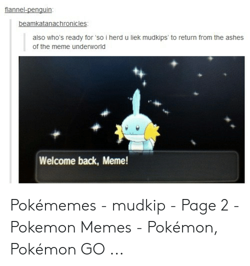 Liek Mudkips: beamkatanachronicles  also who's ready for'so i herd u liek mudkips to return from the ashes  of the meme underworld  Welcome back, Meme! Pokémemes - mudkip - Page 2 - Pokemon Memes - Pokémon, Pokémon GO ...
