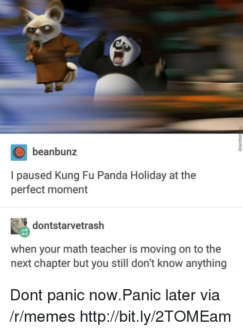 Kung Fu Panda: beanbunz  I paused Kung Fu Panda Holiday at the  perfect moment  dontstarvetrash  when your math teacher is moving on to the  next chapter but you still don't know anything Dont panic now.Panic later via /r/memes http://bit.ly/2TOMEam