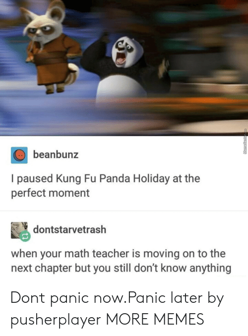 Kung Fu Panda: beanbunz  I paused Kung Fu Panda Holiday at the  perfect moment  dontstarvetrash  when your math teacher is moving on to the  next chapter but you still don't know anything Dont panic now.Panic later by pusherplayer MORE MEMES