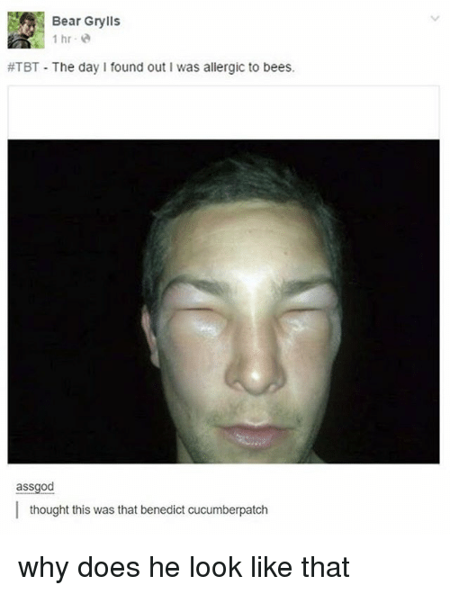 Benedicted: Bear Grylls  1 hr  ATBT The day found out Iwas allergic to bees.  assgod  thought this was that benedict cucumberpatch why does he look like that