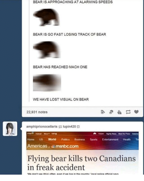 Alarming: BEAR IS APPROACHING AT ALARMING SPEEDS  BEAR IS GO FAST LOSING TRACK OF BEAR  BEAR HAS REACHED MACH ONE  WE HAVE LOST VISUAL ON BEAR  22,931 notes  amphiprionocellaris lupin420  Home US World Politics BusinessSports Entertainment Health Te  Americas msnbc.com  Flying bear kills two Canadians  in freak accident