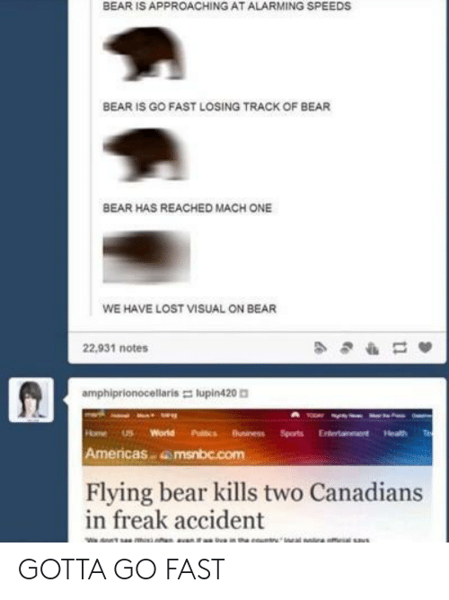 Heath: BEAR IS APPROACHING AT ALARMING SPEEDS  BEAR IS GO FAST LOSING TRACK OF BEAR  BEAR HAS REACHED MACH ONE  WE HAVE LOST VISUAL ON BEAR  22,931 notes  amphiprionocellaris lupin420  HomeS World Puitcs Buniness Sports Eterainment Heath  Americas amsnbc.com  Flying bear kills two Canadians  in freak accident GOTTA GO FAST