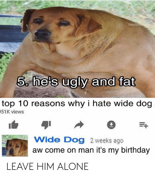 its my birthday: bearbou  5 he's ugly and fat  top 10 reasons why i hate wide dog  51K views  Wide Dog 2 weeks ago  aw come on man it's my birthday LEAVE HIM ALONE
