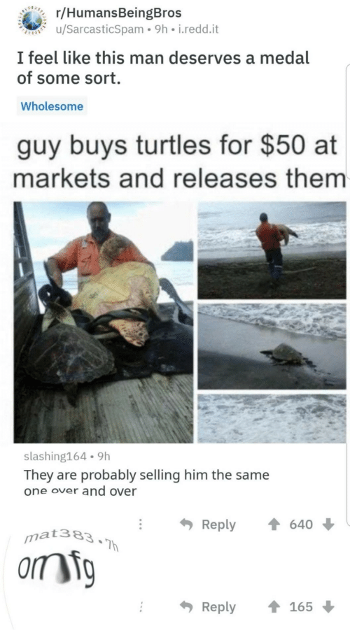 Medal: BEARERC/HumansBeingBros  u/SarcasticSpam 9h i.redd.it  I feel like this man deserves a medal  of some sort.  Wholesome  guy buys turtles for $50 at  markets and releases them  slashing164 9h  They are probably selling him the same  one over and over  Reply  640  mat383.Th  orm ig  Reply  165